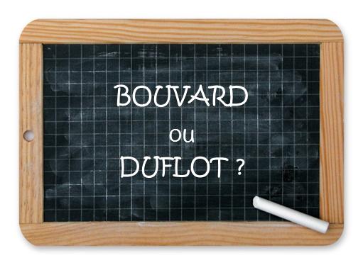 Investissement locatif Bouvard