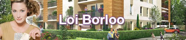 Investissement locatif défiscalisation Borloo